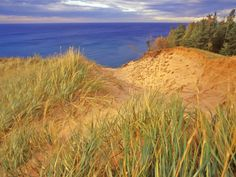 Sand Dunes Along Lake Superior at Pictured Rocks National Seashore, Grand Marais, Michigan, USA. Where I spent all my summers as a kid at my grandmas :) Michigan Usa, Lake Michigan, Minnesota, Grand Marais Michigan, Subject Of Art, Picture Rocks, Lake Huron, The Dunes, Lake Superior
