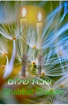 Shabbat shalom dear friends Jewish Shabbat, Shabbat Shalom, Sabbath Rest, Sabbath Day, Jewish Customs, Good Shabbos, Shavua Tov, Shabbat Candles, Religion