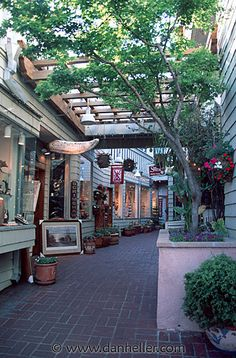 Sausalito, CA, SHOPPING!