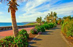 Gran Canaria Otellerinde Sevgililer gününe özel 100.00 TL İndirim fırsatı! Linke tıkla http://tr.otel.com/hotelsearch.php?destination=Gran%20Canaria,Spain&sm=pinteresttr kodu gir NFOZLR37 indirimi kap!