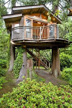 backyard family tree house on three tree trunks