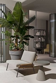 44+ Awesome Tree Interior Design Ideas To Apply Asap – housedecor #interior #interiordesign #interiorideas