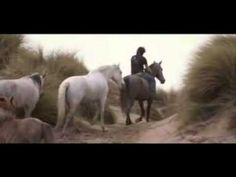 Jean-François Pignon.  Amazing Horse trainer!