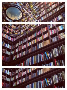Too Many Books… No Such Thing