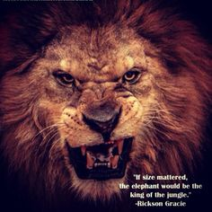 """""""If Size Mattered, The Elephant Would Be The King Of The Jungle."""""""