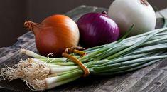 Amit sokan nem tudnak – Ebben különböznek a hagymafajták egymástól! Types Of Onions, Clean Your Liver, Best Probiotic, Nutrient Rich Foods, Nutrition, Eating Raw, Food Waste, Health Diet, Home Remedies