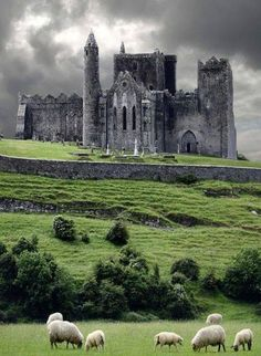 Medieval castle Cashel, Ireland. The Rock Of Cashel.