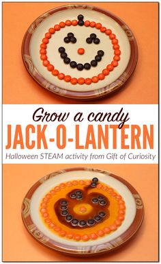 Grow a candy jack-o-lantern #Halloween #STEAM #STEM activity for kids || Gift of Curiosity