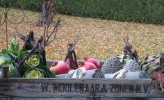 http://mosoggrene.blogspot.dk/