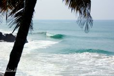 Salted Boards | Surfing pointbreaks in Varkala, India