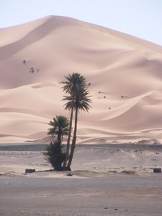 Sahara Morocco. Photo by Melanie el Haddad