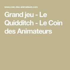 Grand jeu - Le Quidditch - Le Coin des Animateurs