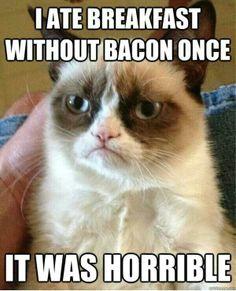 Breakfast without bacon Grumpy Cat