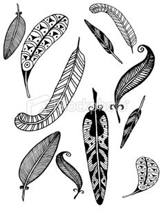 Google Image Result for http://i.istockimg.com/file_thumbview_approve/8881020/2/stock-illustration-8881020-feathers.jpg