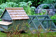 http://stayorganic4health.blogspot.com/2014/04/chicken-coop-plans-tips-ideas-designs.html  chicken house, top rated house for chicken, best plans for chicken coop