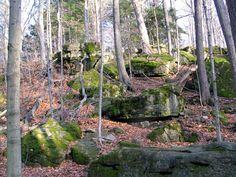 Dundas Valley Headwaters Trail