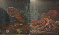 Waldorf ~ 4th grade ~ Human & Animal ~ Squid ~ Octopus ~ chalkboard drawing