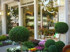 flower store - flower store in spanish - flower store online