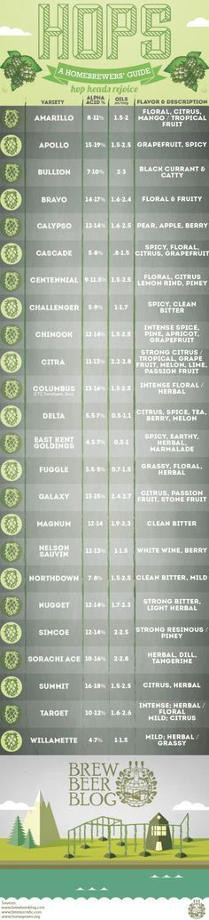 Hops Guide - Like a beer field guide :] http://lotsofhead.com/hops-a-homebrewers-guide?utm_content=bufferb03b6&utm_medium=social&utm_source=pinterest.com&utm_campaign=buffer?utm_content=bufferb03b6&utm_medium=social&utm_source=pinterest.com&utm_campaign=buffer #Craftbeer #Beer