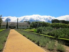 Winelands recommendations