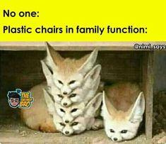 Funny Cartoon Memes, Funny School Jokes, Very Funny Jokes, Funny Laugh, Haha Funny, Hilarious, Crazy Jokes, Crazy Funny Memes, Really Funny Memes
