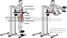 Weighted captain's chair leg and hip raise exercise