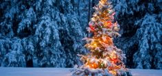 5 Tips To Enjoy A Restful & Nourishing Holiday Season