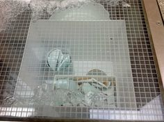 Twitter / CRASSHlive: The ice thaws to disclose #deWaal ...