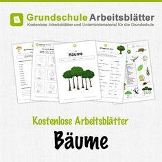 Kostenlose Arbeitsblätter und Unterrichtsmaterial für den Sachunterricht zum Thema Bäume in der Grundschule.