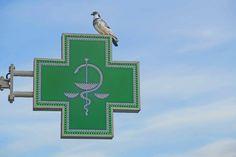 ¿Puede mi farmacia llevar otro rótulo que no sea una cruz? Rotulos en Barcelona | Tecneplas - http://rotulos-tecneplas.com/puede-farmacia-llevar-rotulo-no-sea-una-cruz/    #ROTULOSYCRUCESDEFARMACIA @Tecneplas