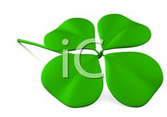 lucky clover made in 3d over a white background