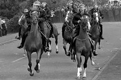 Police Horses Charge Through Miners Picket Line. Coal Miners, North East England, Band Of Brothers, British History, Oil Lamps, Hemsworth, Team Building, Britain, Police