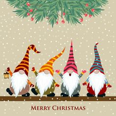 Christmas Card With Gnomes - Happy Christmas - Noel 2020 ideas-Happy New Year-Christmas Christmas Gnome, Christmas Signs, Christmas Pictures, Christmas Art, Christmas Greetings, Christmas Decorations, Christmas Ornaments, Vector Christmas, Painted Christmas Cards