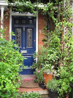 Front door surrounded by greenery.