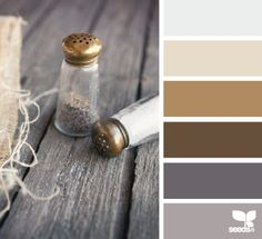 seasoned tones - can you tell I'm working on a website design needing new-rustic-traditional spelled in the colors? ha!