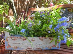 Caja de frutas decorada con decoupage y stencils en relieve y pintados