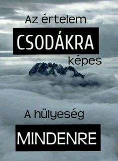 Read Idézetek from the story Az új lány (SZJG) by DemjenMikka (Bogi XD) with 685 reads. Motivational Quotes, Inspirational Quotes, Funny Memes, Jokes, Fitness Motivation, Funny People, Funny Cute, Funny Photos, Quotations