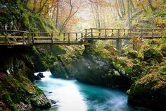 Vinegar Gorge Slovenia