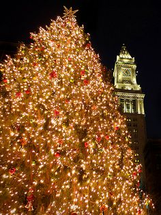 Christmas time in Boston.