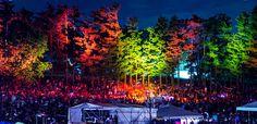 All Good Festival - take me backkk