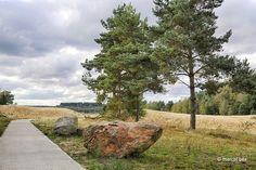 Mechelse Heide / Zandloperspad