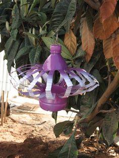 from plastic bottle