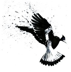 Magpie Ink by =Dygee