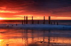 Natures Fire, South Australia -  by David Gibbs