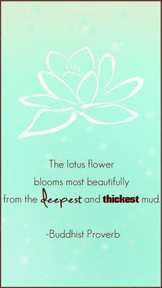 394 Best The Lotus Images In 2019 Lotus Flower Drawings Exotic
