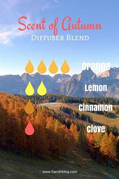 essential oil recipes | blends