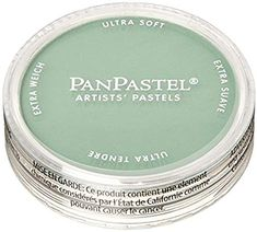 PanPastel Ultra Soft Artist Pastel 9ml-Permanent Green Shade: Amazon.it: Casa e cucina