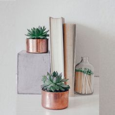 Details Mini Copper Planter, Ideal For Succulents Or Cacti. Recommended For  Succulents Types That Need Very Little Watering, With Short Growth Height  And ...