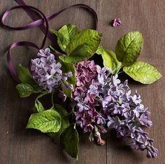 Lina Veber-Bakministeriet Sugar Flowers   Sweden