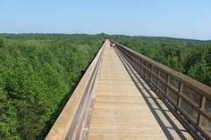 2. Hike High Bridge Trail in Farmville.